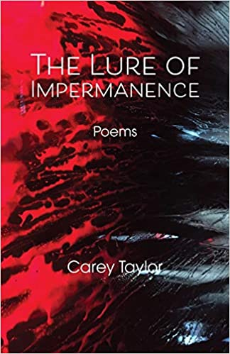 The Lure of Impermanence by Carey Taylor